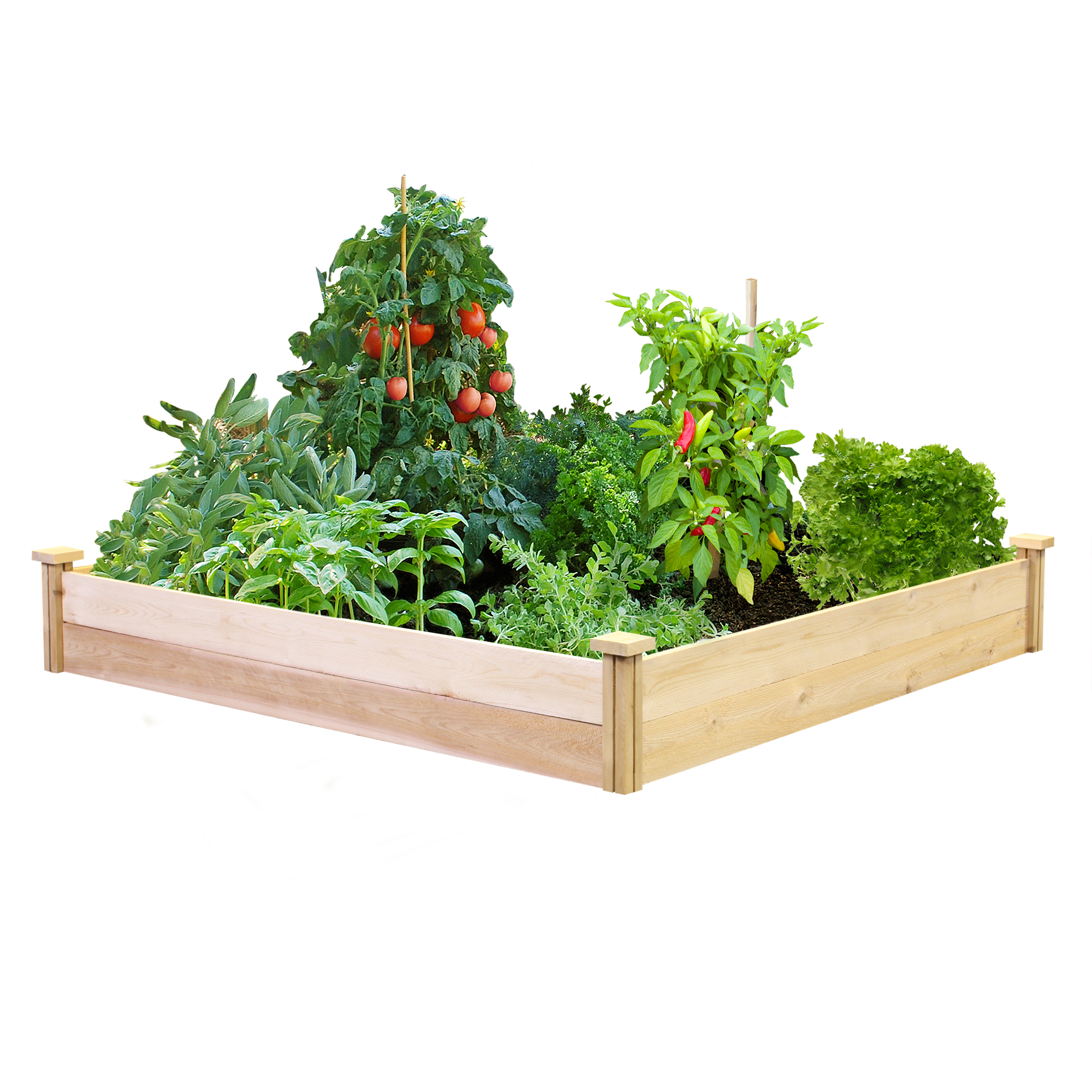 Greenes Value Cedar Raised Garden Bed 4 ft. x 4 ft. x 7 in., Unfinished (.5-.625 in. thick)