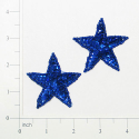 Expo Int'l Star Sequin Applique Pack of 2
