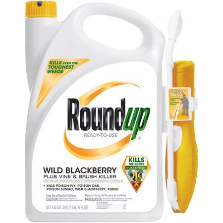 Roundup Wild Blackberry Plus Vine Brush Killer Comfort Wand 133