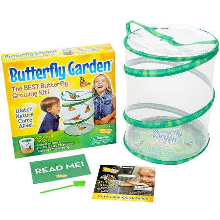 Butterfly Growing Kit Toy - Includes Voucher Coupon for 5 Live Caterpillars to Butterflies, Pop-up, reusable 11.5-inch tall mesh habitat perfect for.., By Insect