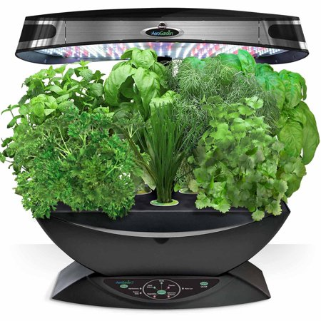 Miracle gro aerogarden 7 led with gourmet herb seed pod for Aero garden com
