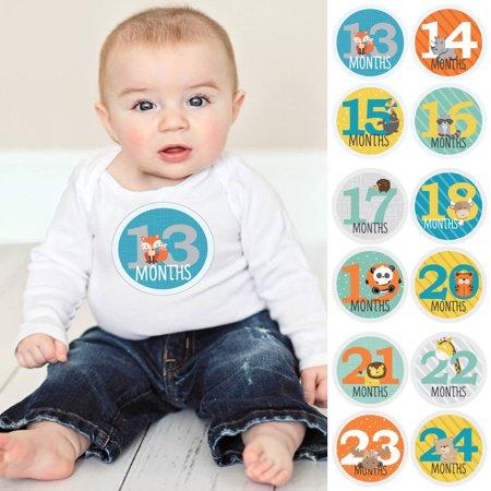 Baby Shower Return Gift Ideas (Zoo Animals - Baby Second Year Monthly Sticker Set - Baby Shower Gift Ideas - 13 - 24 Months)