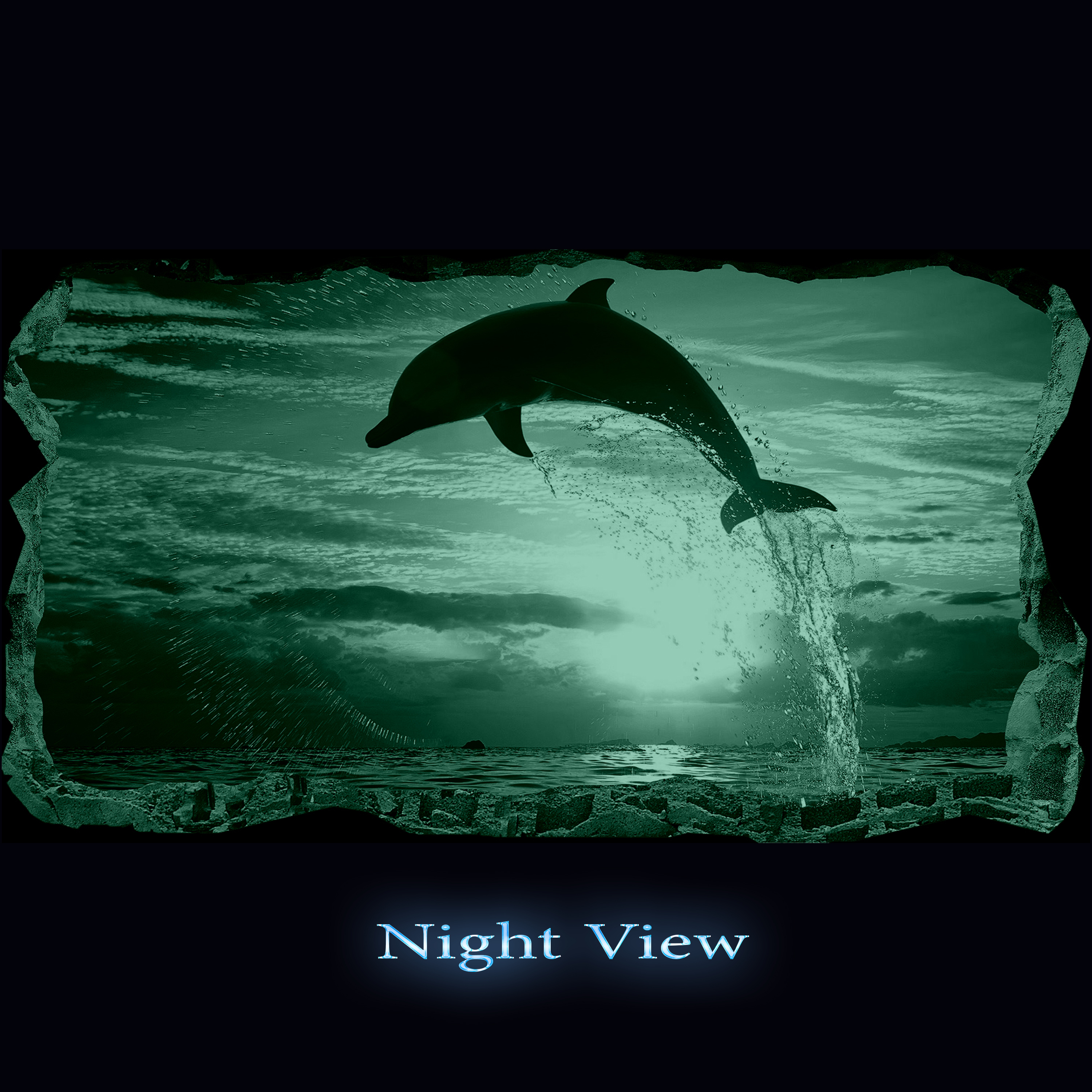 Startonight 3D Mural Wall Art Photo Decor Dolphin Amazing Dual View ...
