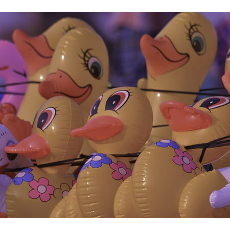 LAMINATED POSTER Rubber Ducks Yellow Toy Duckling Ducks Play Kids Poster 24x16 Adhesive - Yellow Rubber Ducks