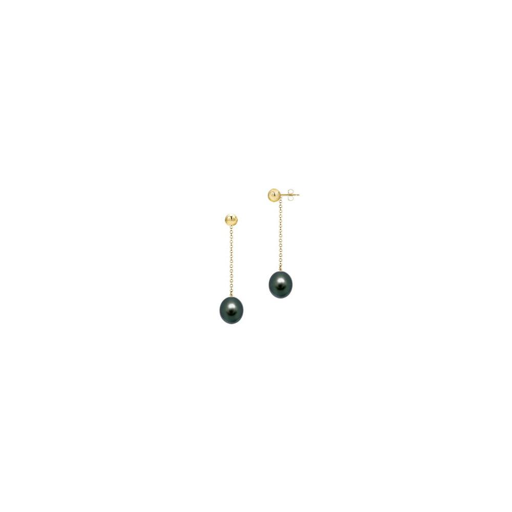 Black Akoya Cultured Pearl Earrings 14K Yellow Gold 7 MM - image 2 of 2