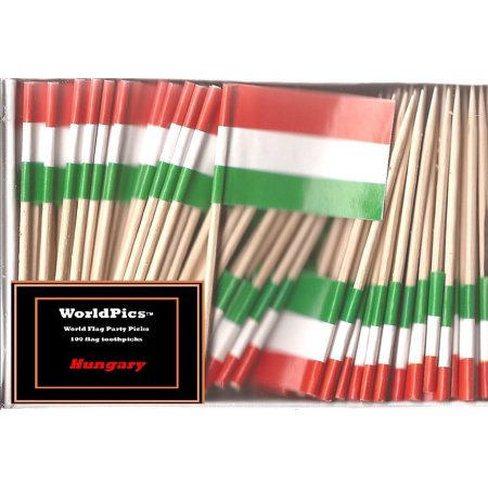 One Box Hungary Toothpick Flags, 100 Small Hungarian Cupcake Flag Toothpicks or Cocktail Picks