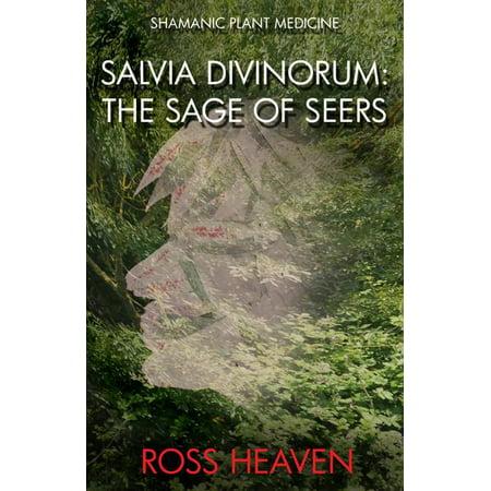 Salvia Scarlet Sage - Shamanic Plant Medicine - Salvia Divinorum : The Sage of the Seers