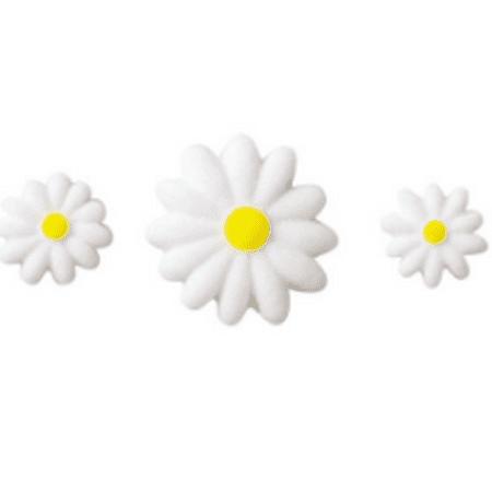24pk White Daisies 3/4