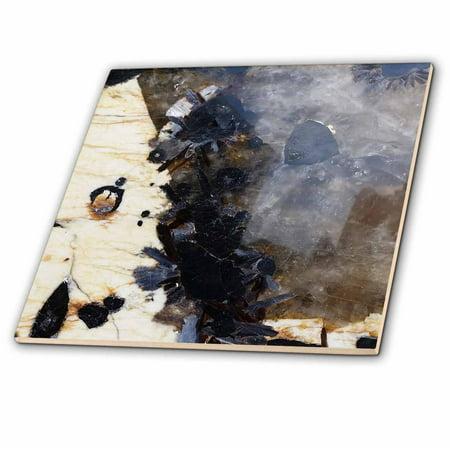 Ivory Ceramic Tile (3dRose Image of Beautiful Black And Gray Blue Ivory Granite - Ceramic Tile, 12-inch )