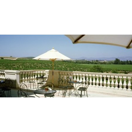 Vineyards Terrace at Winery Napa Valley CA USA Poster Print - Halloween Store Napa Ca