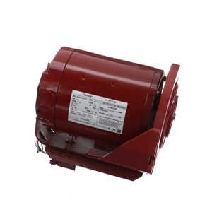 1/3 hp 1725 RPM 115V Hot Water Circulator Motor Century # HW2034BL (Hot Water Circulator Pump Motor)