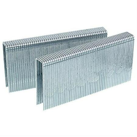 SENCO FL19BAB 15.5 Gauge 1/2 in. Crown 1-3/4 in. Galvanized Flooring Staples (5,200-Pack)