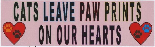 10x3 cats leave paw prints bumper sticker cat window stickers