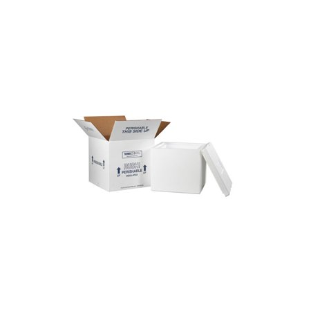 Box Package - Box Packaging Insulated Shipping Container, White, 1 Each