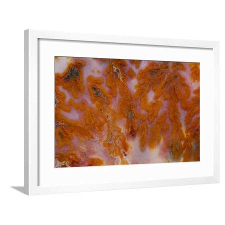 Plume Agate, Sammamish, Washington Framed Print Wall Art By Darrell Gulin