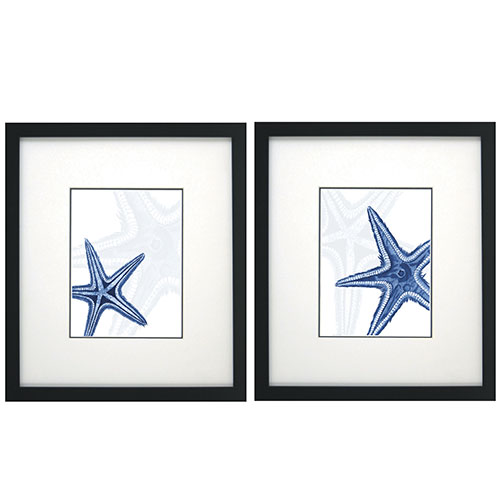 Blue Starfish Wall Decor, Set of 2