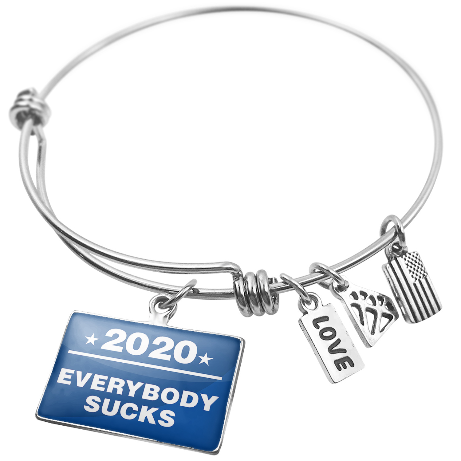 Expandable Wire Bangle Bracelet Funny Election Sign Everybody Sucks 2020 - NEONBLOND