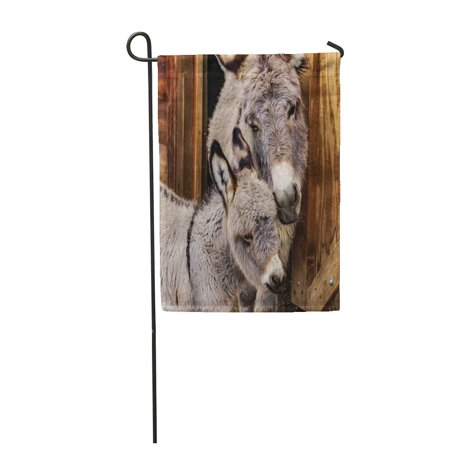 LADDKE Mother and Her Baby Adorable Closeup of Miniature Donkey Loving Foal Garden Flag Decorative Flag House Banner 12x18 - Adorable Garden