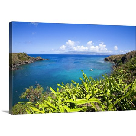 Great BIG Canvas Ron Dahlquist Premium Thick-Wrap Canvas entitled Hawaii, Maui, Honolua Bay, Green Brush Overlooking Bright Blue Water