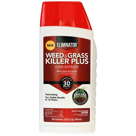 Eliminator Fast Acting Weed and Grass Killer Plus, Concentrate Formula, 32 oz - Halloween Weed