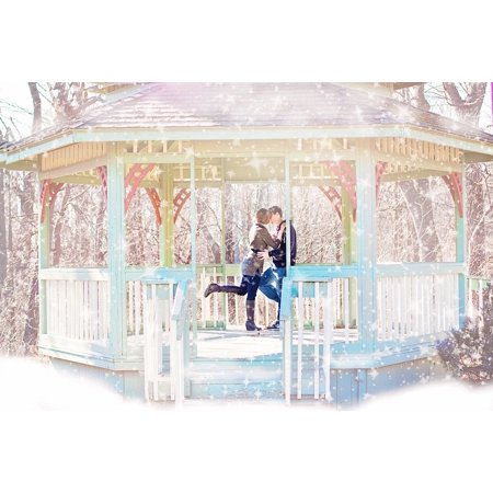 Canvas Print Gazebo Snow Happiness Kissing Couple Winter Stretched Canvas 10 x 14