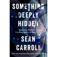Something Deeply Hidden : Quantum Worlds and the Emergence of Spacetime