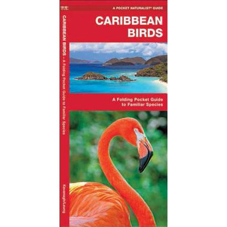 Caribbean Bird (Pocket Naturalist Guides: Caribbean Birds: An Introduction to Familiar Species)