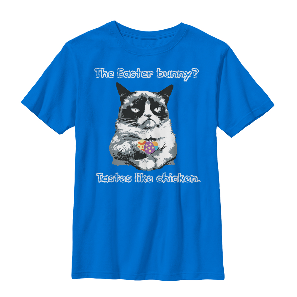 Grumpy Cat Boys' Tastes Like Chicken T-Shirt