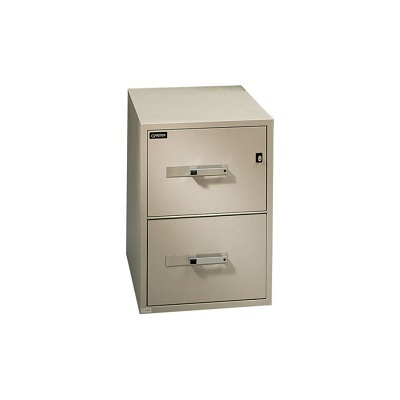 File Cabinet Fire Resistant Vertical 2 Drawer Beige Walmart Canada