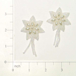 Expo Int'l Star Beaded Applique Pack of 2