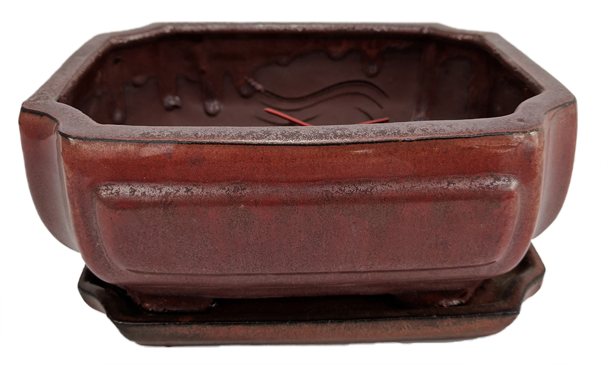 "Pro Bonsai Pot Saucer Pre-Wired Screened CopperFancyRect 8.5"" x 6.5"" x 3.5"" by"