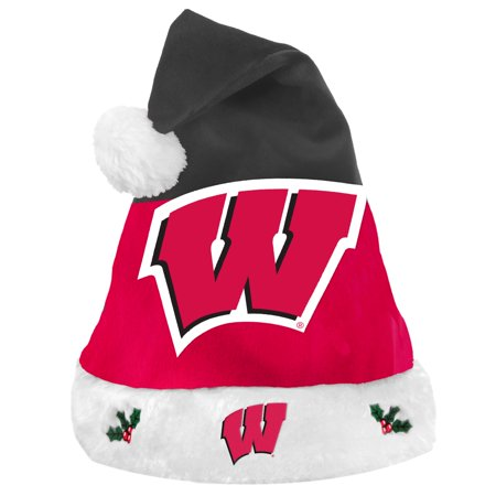 Wisconsin Badgers 2018 NCAA Basic Logo Plush Christmas Santa Hat](Ncaa Logo)