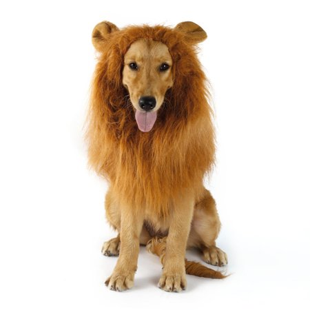 Brown Pet Costume Dog Lion Wigs Mane Hair Scarf Clothes Festival Party Halloween Dog Accessories - Walking On The Street Halloween