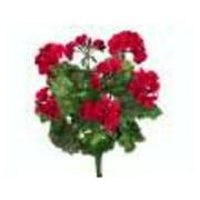 FBG922-RE 19 in. W.R. Geranium Bush X9 Red Pack of 6