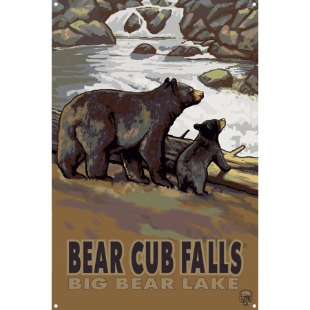 Bear Cub falls Big bear Lake Metal Art Print by Paul A. Lanquist (12