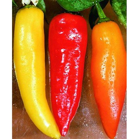 Hot Banana Pepper Plant - Two (2) Live Plants - Not Seeds -Each 4
