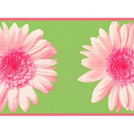 878329 Colorful Daisy Wallpaper Border RU8302b
