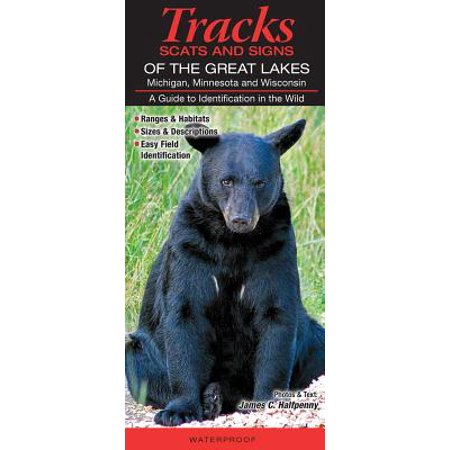 Tracks, Scats & Signs of the Great Lakes Michigan, Minnesota, and Wisconsin : A Guide to Identification in the