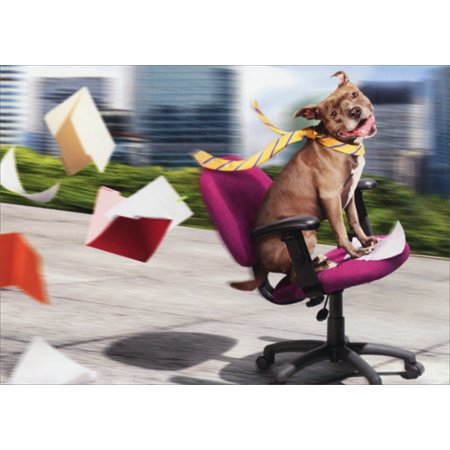 Avanti Press Dog / Office Chair Fun Funny Retirement Card - Fun Office