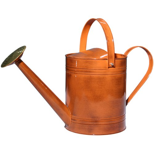 Robert Allen Home and Garden Canyon 2-Gallon Watering Can by Robert Allen Home and Garden