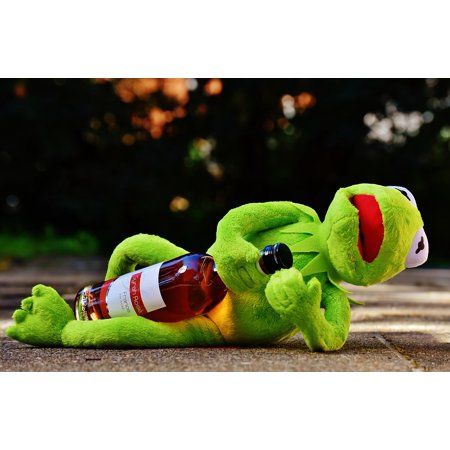 Laminated Poster Frog Kermit Alcohol Rest Sit Drunk Drink Wine Poster Print 24 X 36