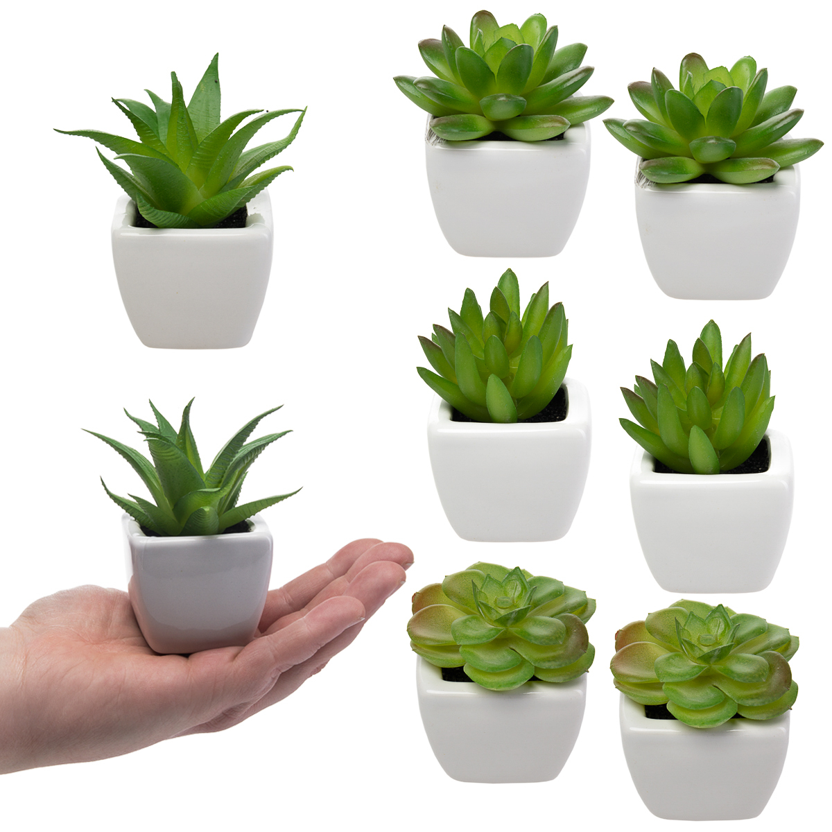 8 Fake Succulent Plants Small Artificial Succulents With White