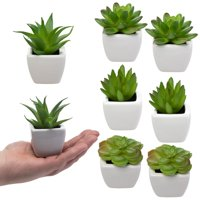 Home Trends 8 Fake Succulent Plants, Small Artificial in White Ceramic Pots