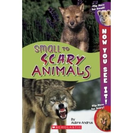 Now You See It  Small To Scary Animals