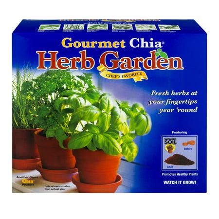 As Seen on TV Chia Pet Herb Garden - Walmart.com