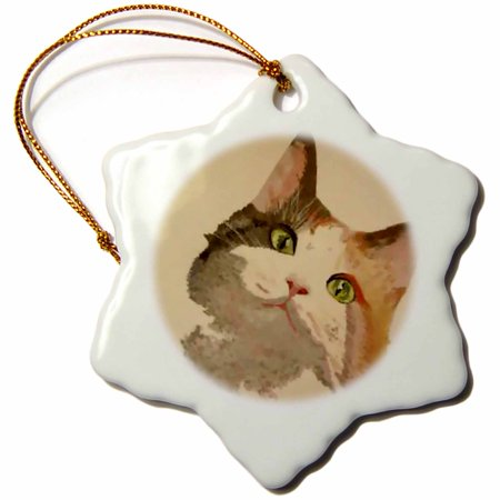 3dRose Im All Ears - animal, calico, calico cat, cat, cats, kitten, pet - Snowflake Ornament, 3-inch Calico Cat Ornament