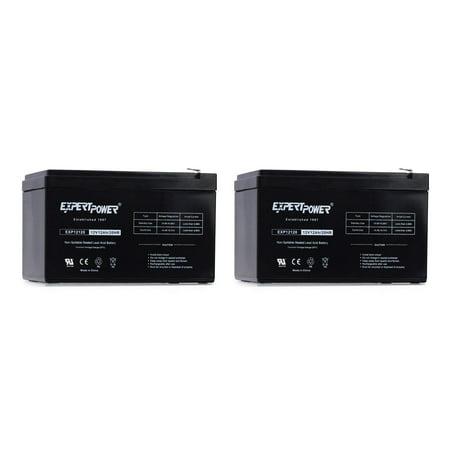 2 Pack - 12 Volt 12 Ah Rechargeable Battery    EXP12120 Size 2 Pack - 12V 12