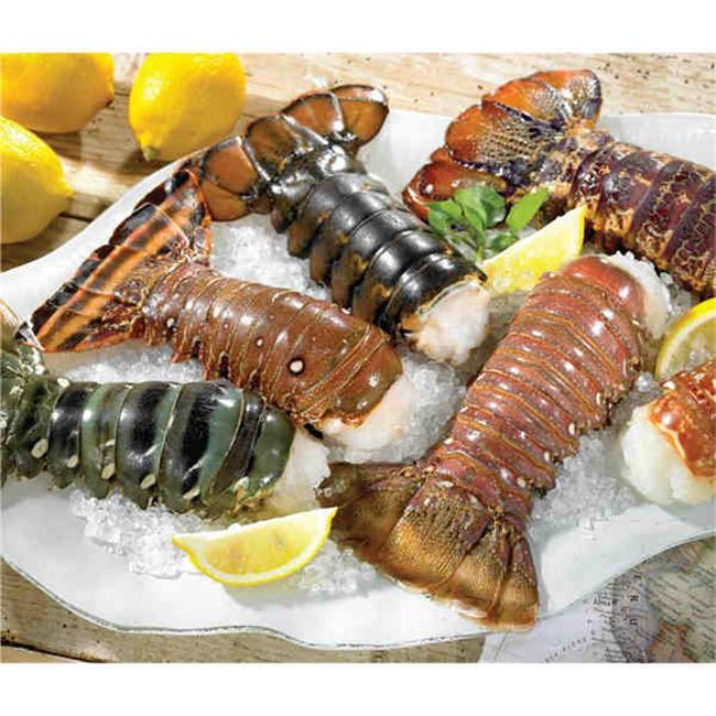 Lobster Gram CCTS1 Continental Collection Tail Sampler- 1 ...