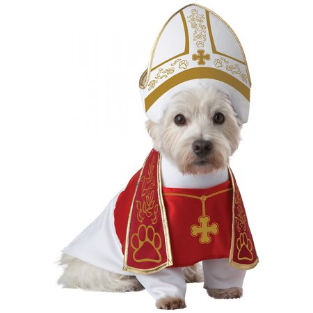 MFR BACKORDER SEASONAL 100915  Animal Planet Holy Hound Dog Costume  Large](Dog Costmes)