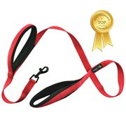 """Soft and Thick Double Handle Premium Nylon 4FT x 3/4Inch Dog Leash - Dual Soft Padded Handles for Ultimate Control - """"Classic Comfort"""" for Small to Large Dogs (Carnation Red)"""